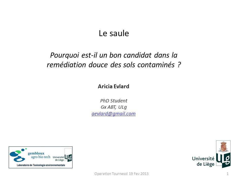 Operation Tournesol 19 Fev 20131 Le saule Pourquoi est-il un bon candidat dans la remédiation douce des sols contaminés ? Aricia Evlard PhD Student Gx