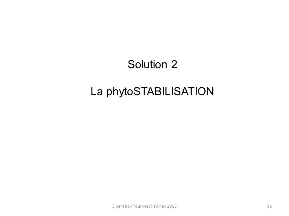 Operation Tournesol 19 Fev 201313 Solution 2 La phytoSTABILISATION