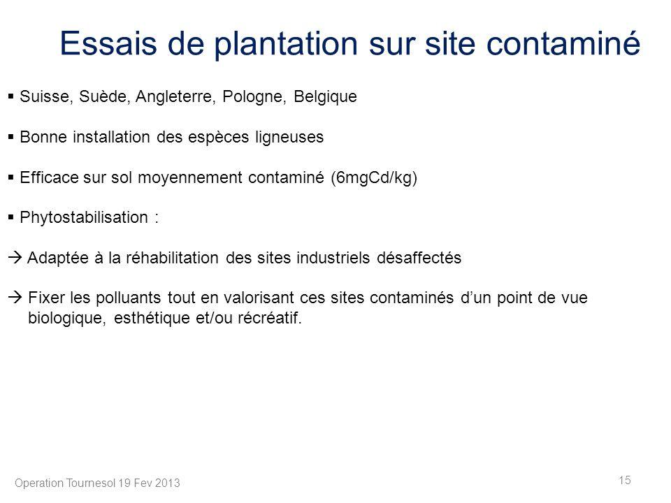 15 Operation Tournesol 19 Fev 2013 Essais de plantation sur site contaminé Suisse, Suède, Angleterre, Pologne, Belgique Bonne installation des espèces