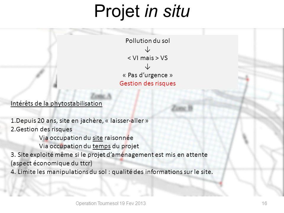 Operation Tournesol 19 Fev 201316 Pollution du sol VS « Pas durgence » Gestion des risques Projet in situ Intérêts de la phytostabilisation 1.Depuis 2
