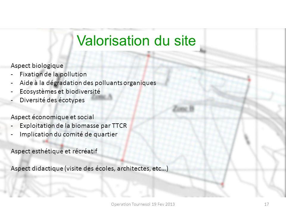 Operation Tournesol 19 Fev 201317 Valorisation du site Aspect biologique -Fixation de la pollution -Aide à la dégradation des polluants organiques -Ec