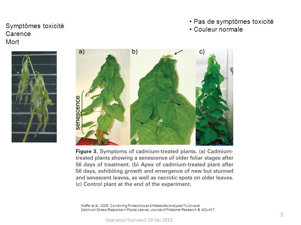 4 Séquestration cellulaire (foliaire, tige) Détoxification = Tolérance par accumulation Exclusion Séquestration cellulaire racinaire min.