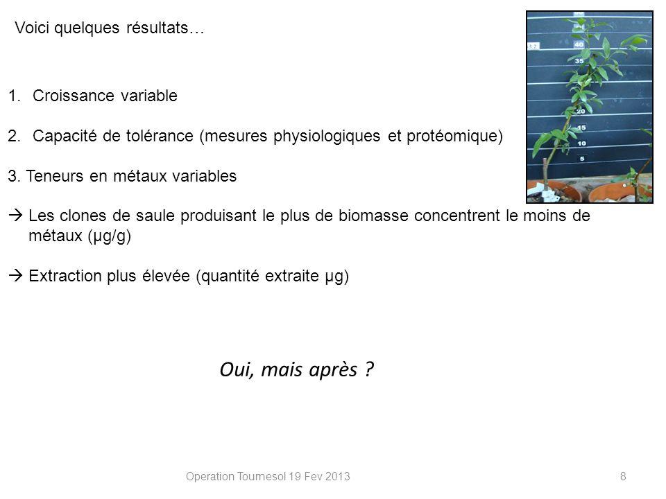 Operation Tournesol 19 Fev 20138 Voici quelques résultats… 1.Croissance variable 2.Capacité de tolérance (mesures physiologiques et protéomique) 3. Te