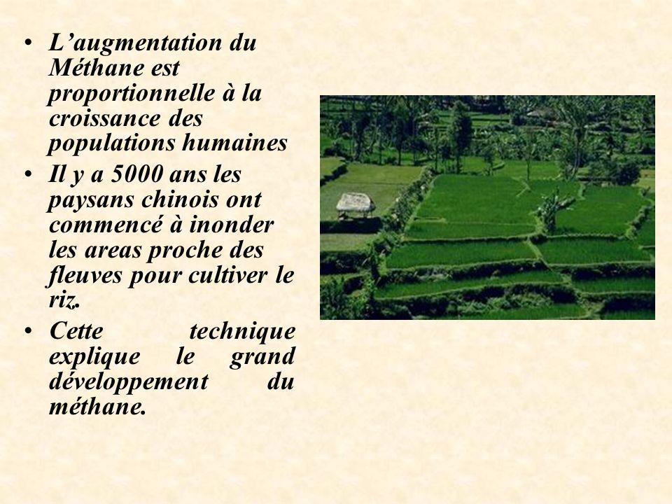 Laugmentation du Méthane est proportionnelle à la croissance des populations humaines Il y a 5000 ans les paysans chinois ont commencé à inonder les areas proche des fleuves pour cultiver le riz.