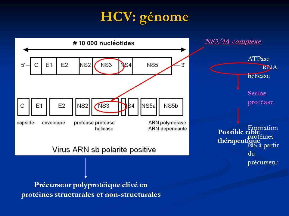 HCV: génome Précurseur polyprotéique clivé en protéines structurales et non-structurales NS3/4A complexe ATPase RNA helicase Serine protéase Formation
