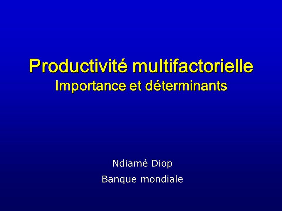 Productivité multifactorielle Importance et déterminants Ndiamé Diop Banque mondiale