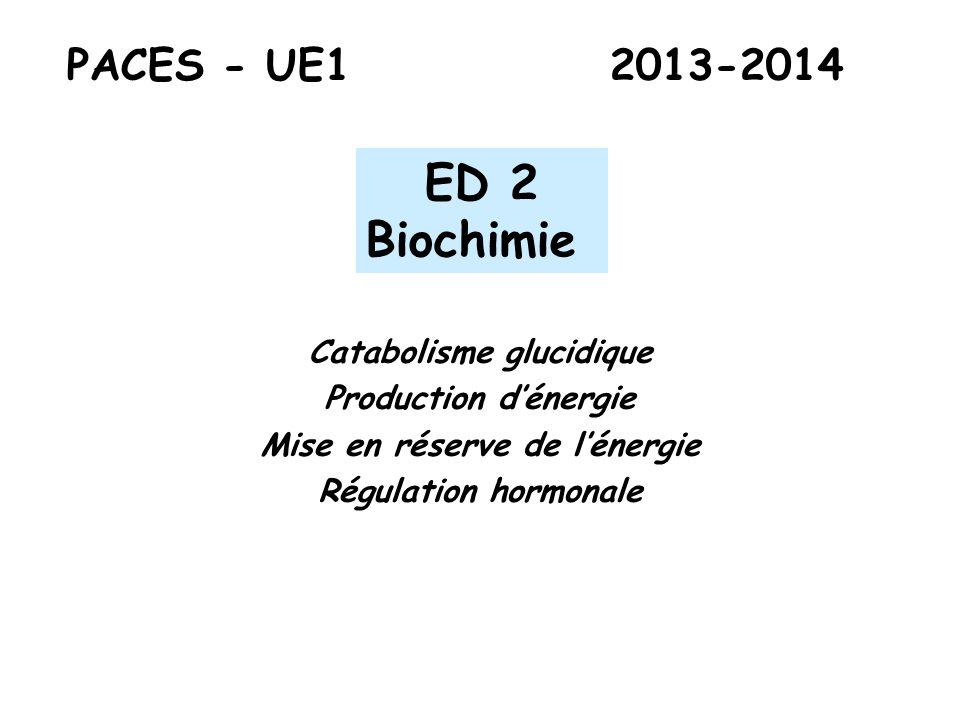 PACES - UE1 2013-2014 ED 2 Biochimie Catabolisme glucidique Production dénergie Mise en réserve de lénergie Régulation hormonale