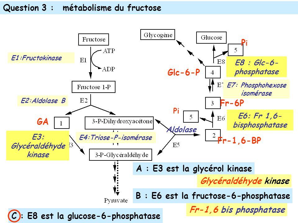 E1:Fructokinase E2:Aldolase B Aldolase E4:Triose-P-isomérase E7: Phosphohexose isomérase GA Fr-1,6-BP PiPi Pi Glc-6-P Fr-6P C : E8 est la glucose-6-phosphatase E8 : Glc-6- phosphatase A : E3 est la glycérol kinase B : E6 est la fructose-6-phosphatase E3: Glycéraldéhyde kinase Glycéraldéhyde kinase E6: Fr 1,6- bisphosphatase Fr-1,6 bis phosphatase Question 3 :métabolisme du fructose