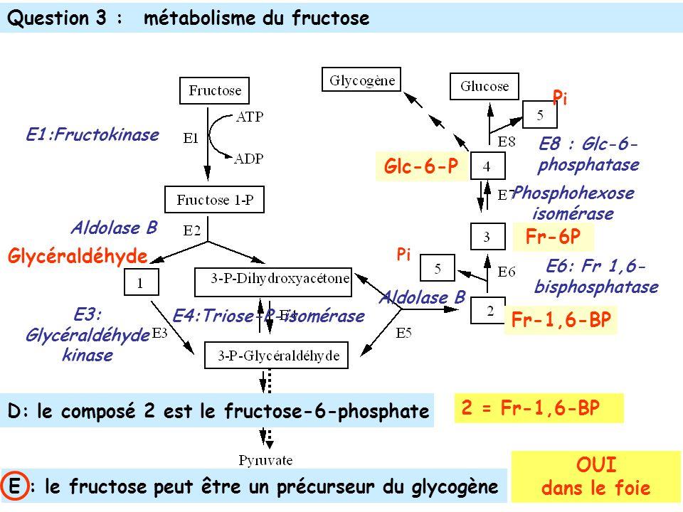 Glycéraldéhyde E1:Fructokinase Aldolase B E3: Glycéraldéhyde kinase Aldolase B E4:Triose-P-isomérase Phosphohexose isomérase Fr-1,6-BP E8 : Glc-6- phosphatase PiPi Pi E6: Fr 1,6- bisphosphatase Glc-6-P Fr-6P D: le composé 2 est le fructose-6-phosphate E : le fructose peut être un précurseur du glycogène Question 3 :métabolisme du fructose 2 = Fr-1,6-BP OUI dans le foie