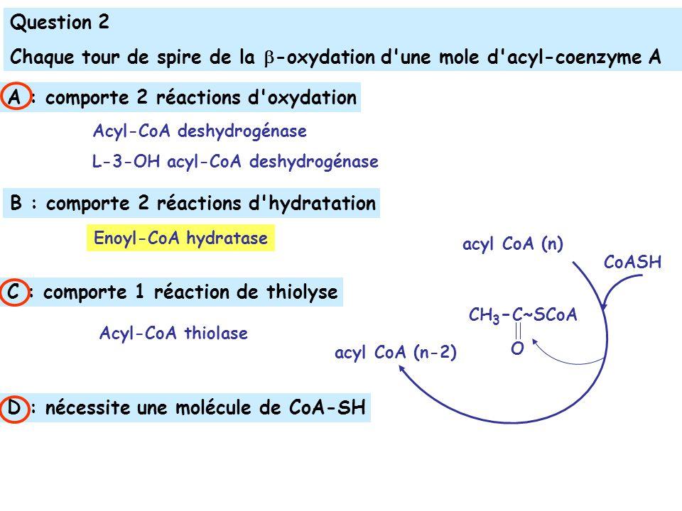 Question 2 Chaque tour de spire de la -oxydation d une mole d acyl-coenzyme A acyl CoA (n) acyl CoA (n-2) CH 3 - C~SCoA O CoASH A : comporte 2 réactions d oxydation C : comporte 1 réaction de thiolyse B : comporte 2 réactions d hydratation D : nécessite une molécule de CoA-SH Acyl-CoA deshydrogénase L-3-OH acyl-CoA deshydrogénase Enoyl-CoA hydratase Acyl-CoA thiolase