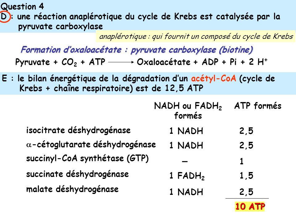 Question 4 D : une réaction anaplérotique du cycle de Krebs est catalysée par la pyruvate carboxylase E : le bilan énergétique de la dégradation dun acétyl-CoA (cycle de Krebs + chaîne respiratoire) est de 12,5 ATP Pyruvate + CO 2 + ATP Oxaloacétate + ADP + Pi + 2 H + Formation doxaloacétate : pyruvate carboxylase (biotine) isocitrate déshydrogénase -cétoglutarate déshydrogénase succinyl-CoA synthétase (GTP) succinate déshydrogénase malate déshydrogénase NADH ou FADH 2 formés ATP formés 1 NADH – 1 FADH 2 1 NADH 2,5 1,5 1 10 ATP anaplérotique : qui fournit un composé du cycle de Krebs