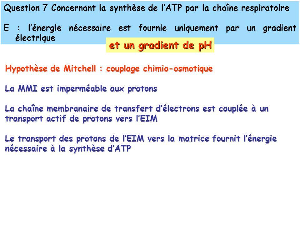 Question 7 Concernant la synthèse de lATP par la chaîne respiratoire E : lénergie nécessaire est fournie uniquement par un gradient électrique et un gradient de pH Hypothèse de Mitchell : couplage chimio-osmotique La MMI est imperméable aux protons La chaîne membranaire de transfert délectrons est couplée à un transport actif de protons vers lEIM Le transport des protons de lEIM vers la matrice fournit lénergie nécessaire à la synthèse dATP