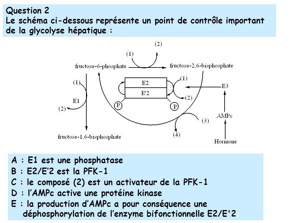 Question 2 Le schéma ci-dessous représente un point de contrôle important de la glycolyse hépatique : A : E1 est une phosphatase B : E2/E2 est la PFK-1 C : le composé (2) est un activateur de la PFK-1 D : lAMPc active une protéine kinase E : la production dAMPc a pour conséquence une déphosphorylation de lenzyme bifonctionnelle E2/E 2