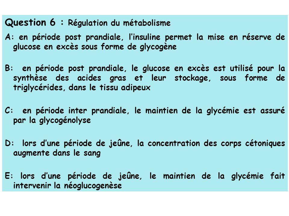 Question 6 : Régulation du métabolisme A: en période post prandiale, linsuline permet la mise en réserve de glucose en excès sous forme de glycogène B: en période post prandiale, le glucose en excès est utilisé pour la synthèse des acides gras et leur stockage, sous forme de triglycérides, dans le tissu adipeux C: en période inter prandiale, le maintien de la glycémie est assuré par la glycogénolyse D: lors dune période de jeûne, la concentration des corps cétoniques augmente dans le sang E: lors dune période de jeûne, le maintien de la glycémie fait intervenir la néoglucogenèse