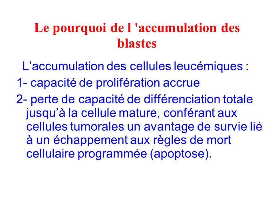 Le pourquoi de l 'accumulation des blastes Laccumulation des cellules leucémiques : 1- capacité de prolifération accrue 2- perte de capacité de différ