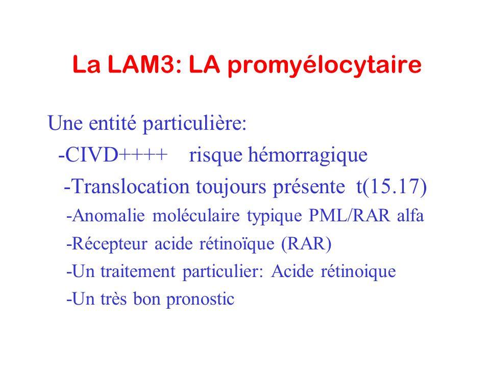 La LAM3: LA promyélocytaire Une entité particulière: -CIVD++++ risque hémorragique -Translocation toujours présente t(15.17) -Anomalie moléculaire typ