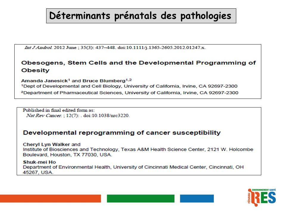 Déterminants prénatals des pathologies