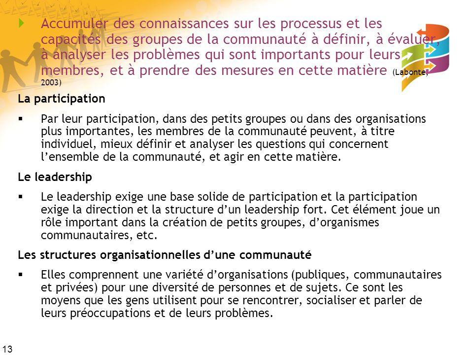 13 Accumuler des connaissances sur les processus et les capacités des groupes de la communauté à définir, à évaluer, à analyser les problèmes qui sont