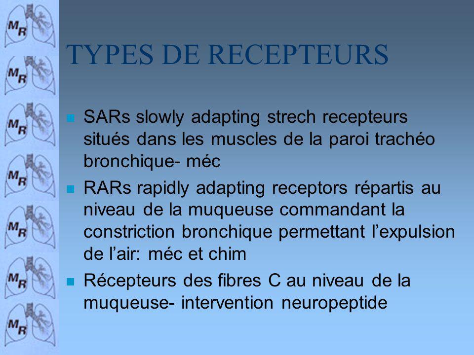 TYPES DE RECEPTEURS n SARs slowly adapting strech recepteurs situés dans les muscles de la paroi trachéo bronchique- méc n RARs rapidly adapting recep