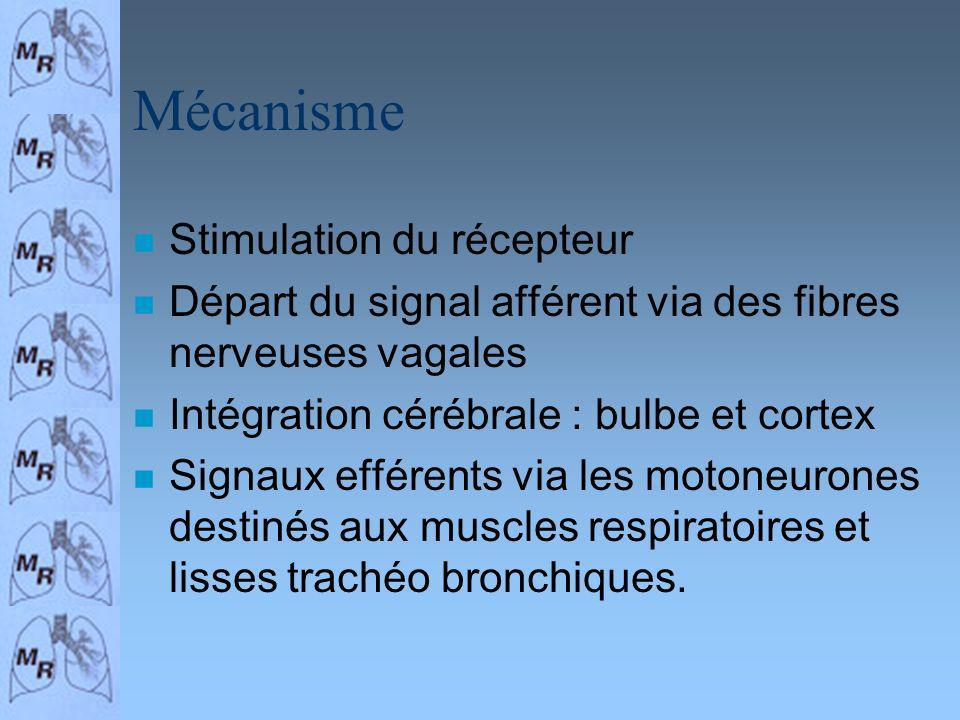 Mécanisme n Stimulation du récepteur n Départ du signal afférent via des fibres nerveuses vagales n Intégration cérébrale : bulbe et cortex n Signaux