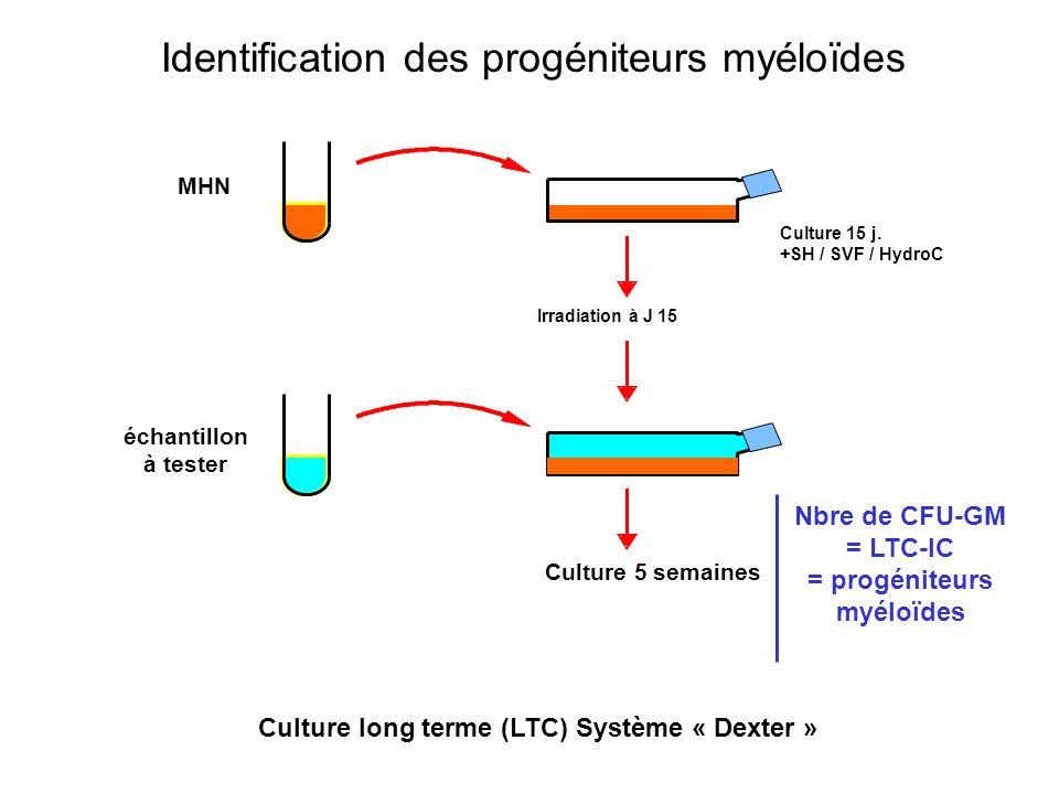 Culture long terme (LTC) Système « Dexter » Culture 15 j. +SH / SVF / HydroC Irradiation à J 15 MHN échantillon à tester Culture 5 semaines Nbre de CF