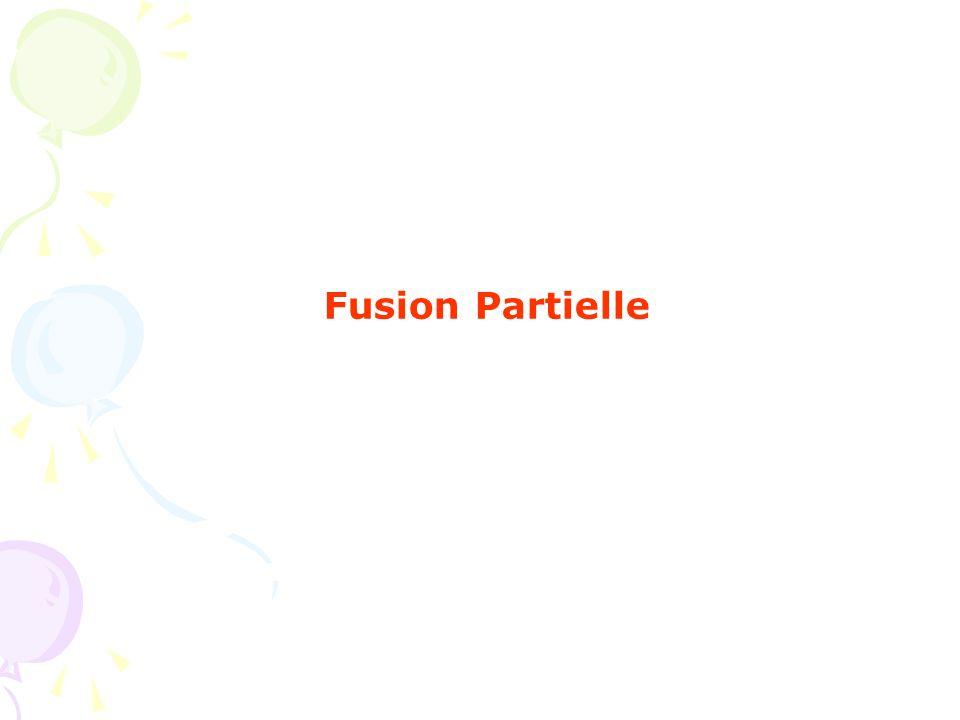 Fusion Partielle