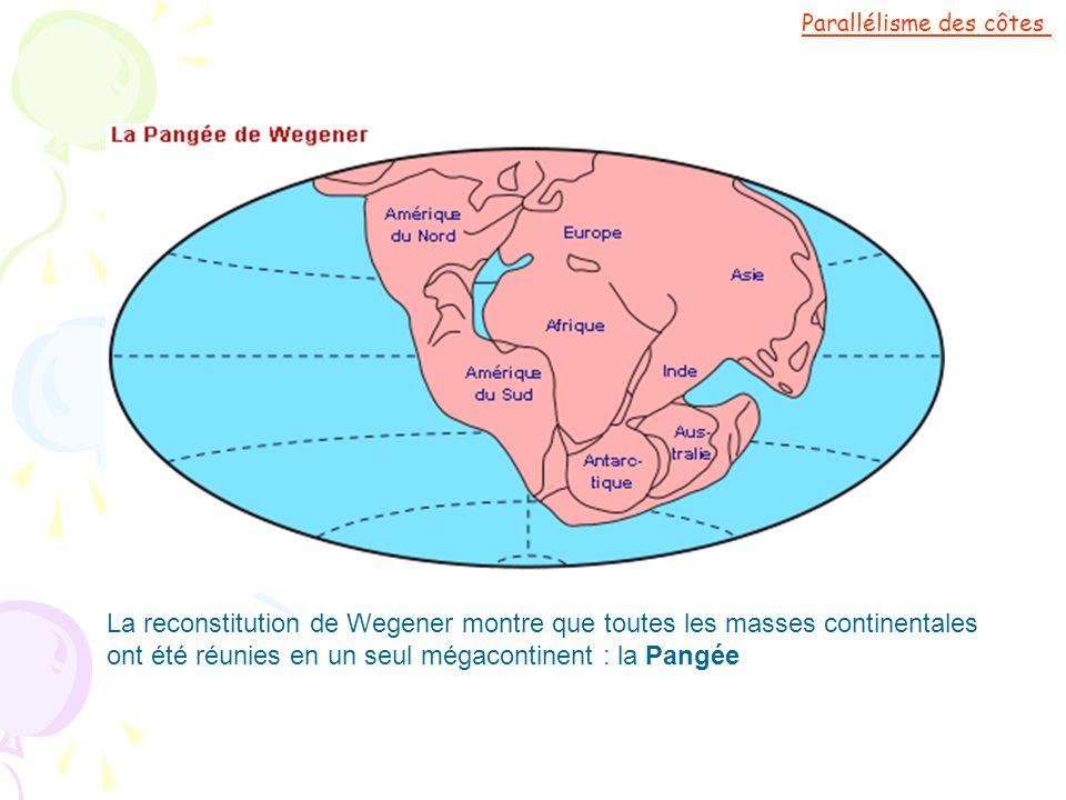 La reconstitution de Wegener montre que toutes les masses continentales ont été réunies en un seul mégacontinent : la Pangée Parallélisme des côtes