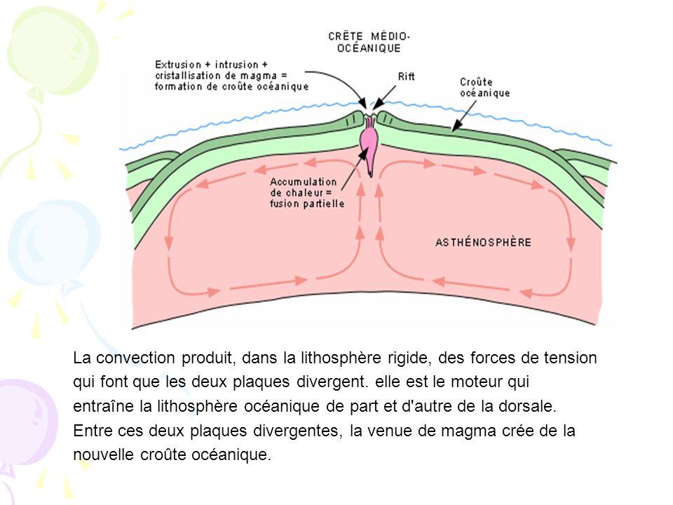 La convection produit, dans la lithosphère rigide, des forces de tension qui font que les deux plaques divergent. elle est le moteur qui entraîne la l