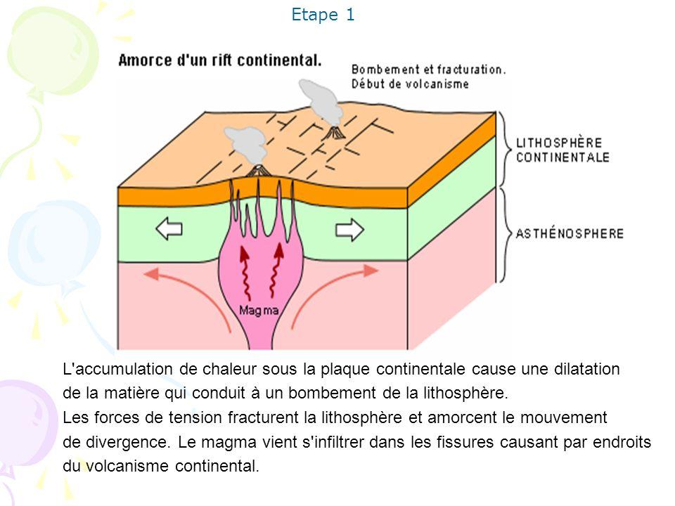 L'accumulation de chaleur sous la plaque continentale cause une dilatation de la matière qui conduit à un bombement de la lithosphère. Les forces de t