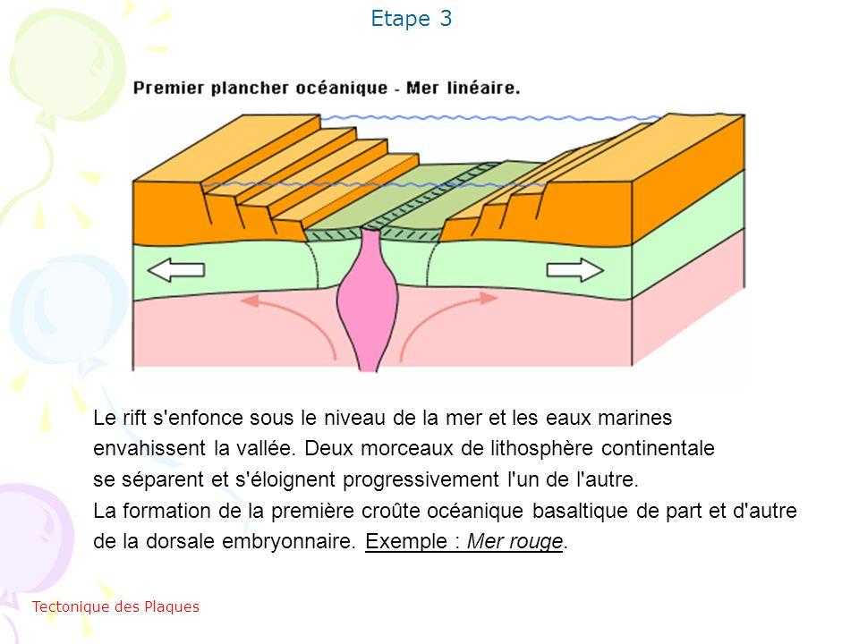 Etape 3 Le rift s'enfonce sous le niveau de la mer et les eaux marines envahissent la vallée. Deux morceaux de lithosphère continentale se séparent et