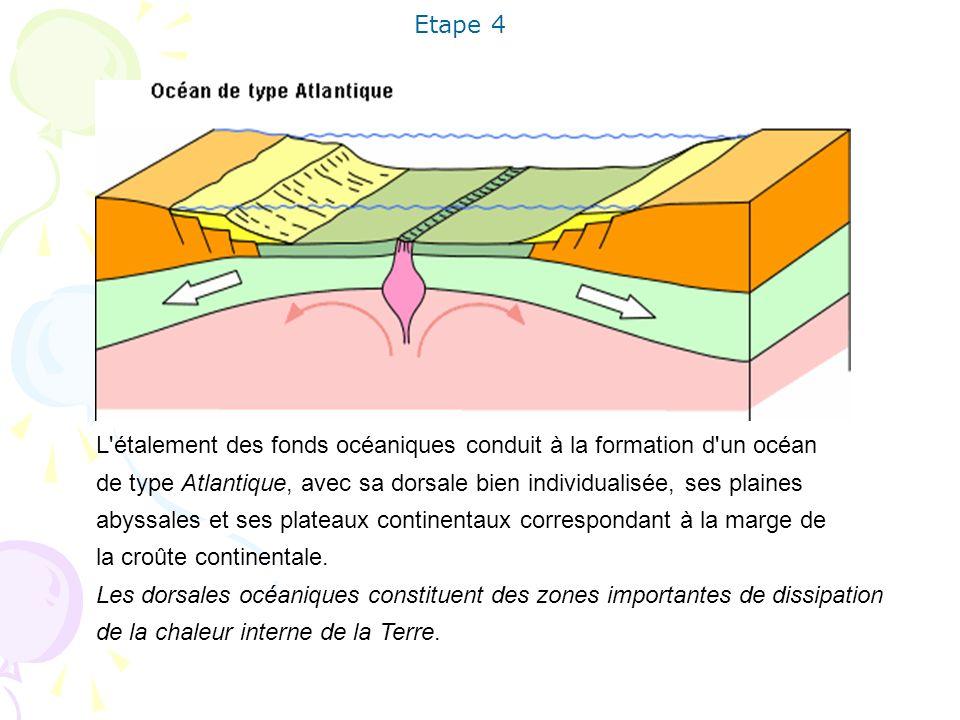 L'étalement des fonds océaniques conduit à la formation d'un océan de type Atlantique, avec sa dorsale bien individualisée, ses plaines abyssales et s