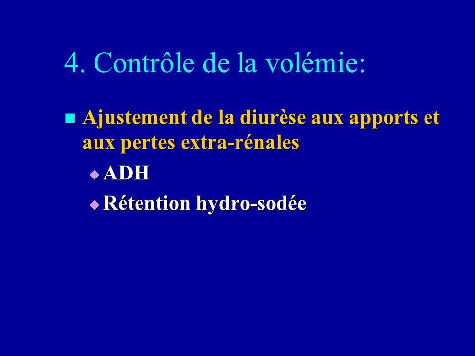 4. Contrôle de la volémie: Ajustement de la diurèse aux apports et aux pertes extra-rénales Ajustement de la diurèse aux apports et aux pertes extra-r