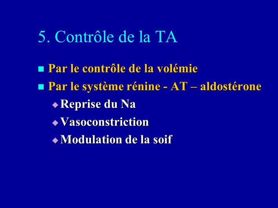 5. Contrôle de la TA Par le contrôle de la volémie Par le contrôle de la volémie Par le système rénine - AT – aldostérone Par le système rénine - AT –