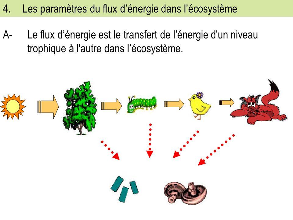 4.Les paramètres du flux dénergie dans lécosystème A-Le flux dénergie est le transfert de l énergie d un niveau trophique à l autre dans lécosystème.