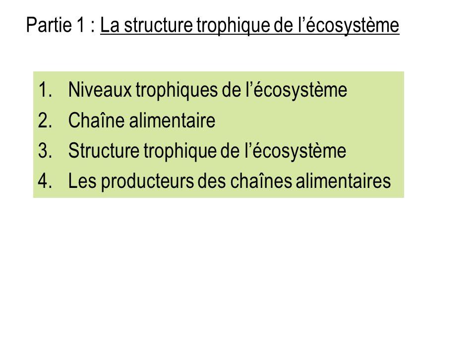 1.1.Niveaux trophiques de lécosystème 2. 2.Chaîne alimentaire 3.
