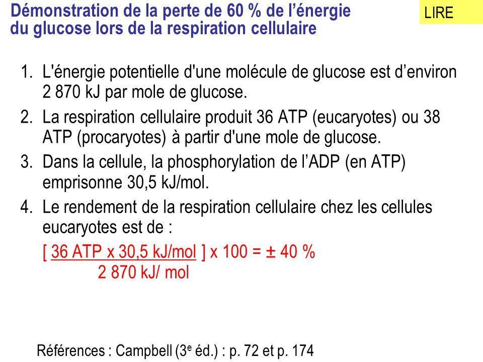Démonstration de la perte de 60 % de lénergie du glucose lors de la respiration cellulaire 1.L énergie potentielle d une molécule de glucose est denviron 2 870 kJ par mole de glucose.