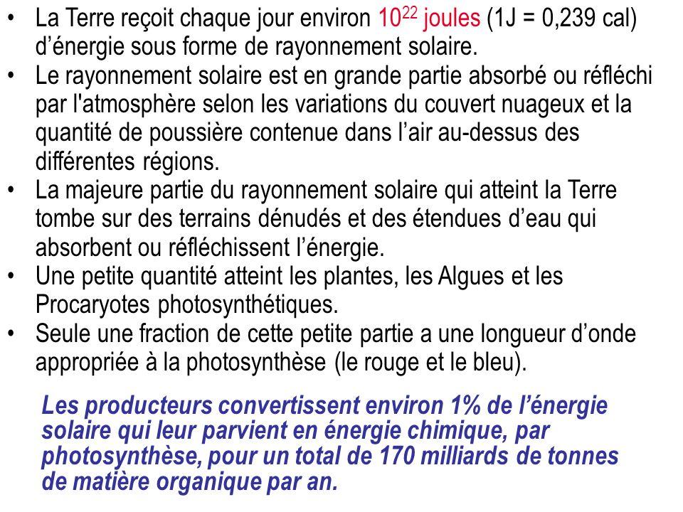La Terre reçoit chaque jour environ 10 22 joules (1J = 0,239 cal) dénergie sous forme de rayonnement solaire.