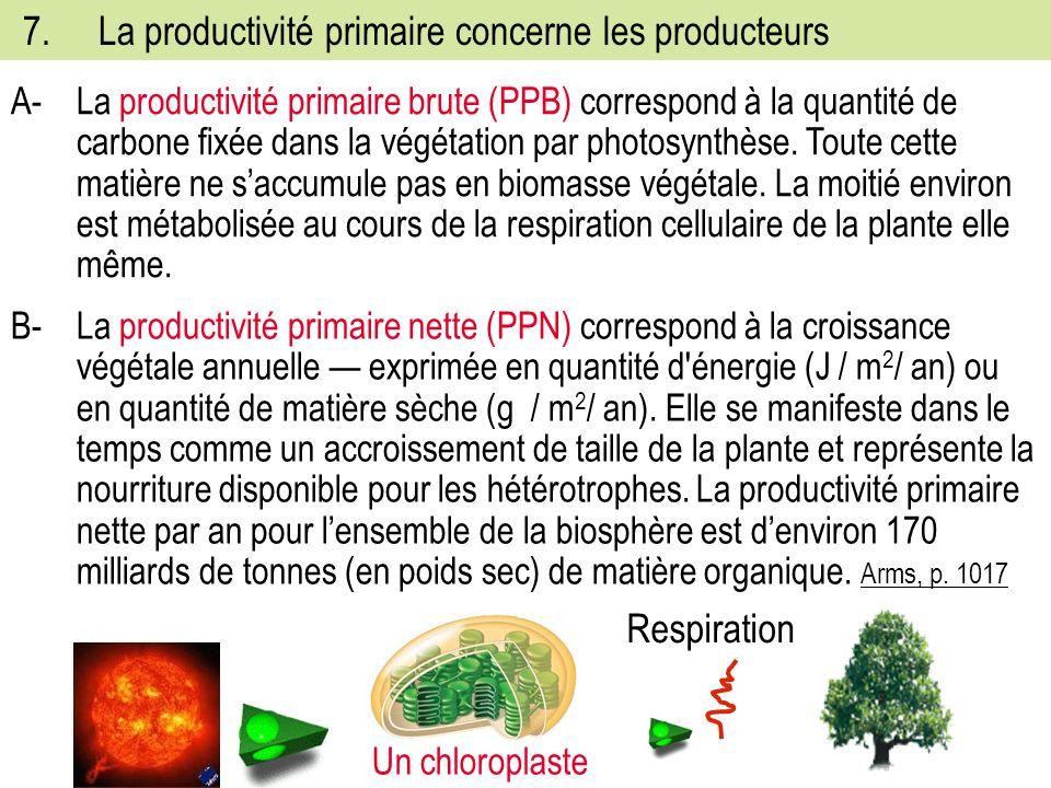 7.La productivité primaire concerne les producteurs A-La productivité primaire brute (PPB) correspond à la quantité de carbone fixée dans la végétation par photosynthèse.