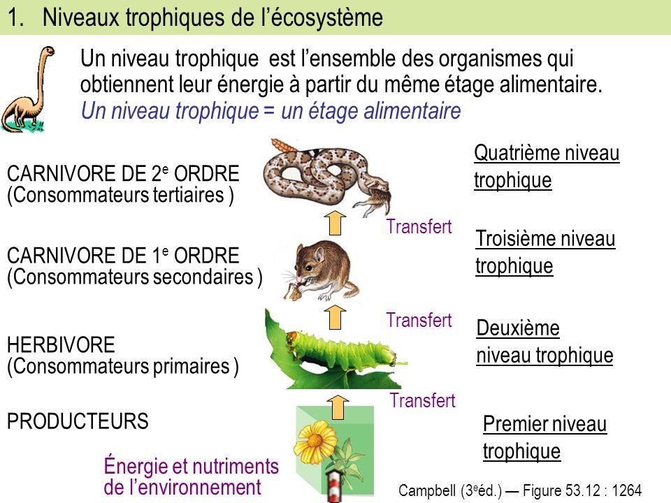 Un niveau trophique est lensemble des organismes qui obtiennent leur énergie à partir du même étage alimentaire.