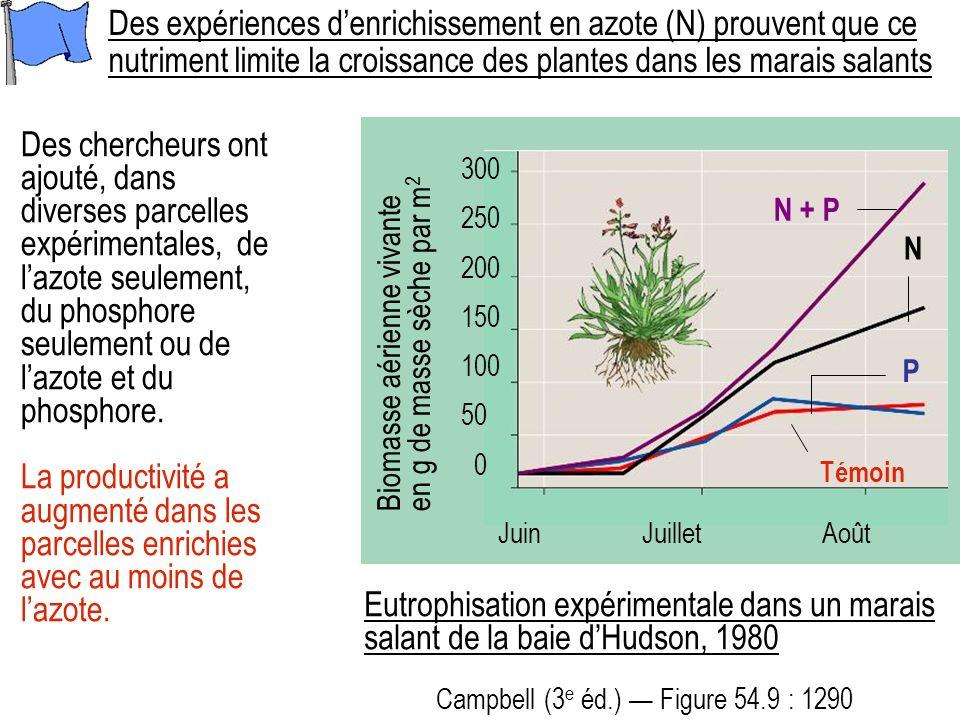 Des chercheurs ont ajouté, dans diverses parcelles expérimentales, de lazote seulement, du phosphore seulement ou de lazote et du phosphore.
