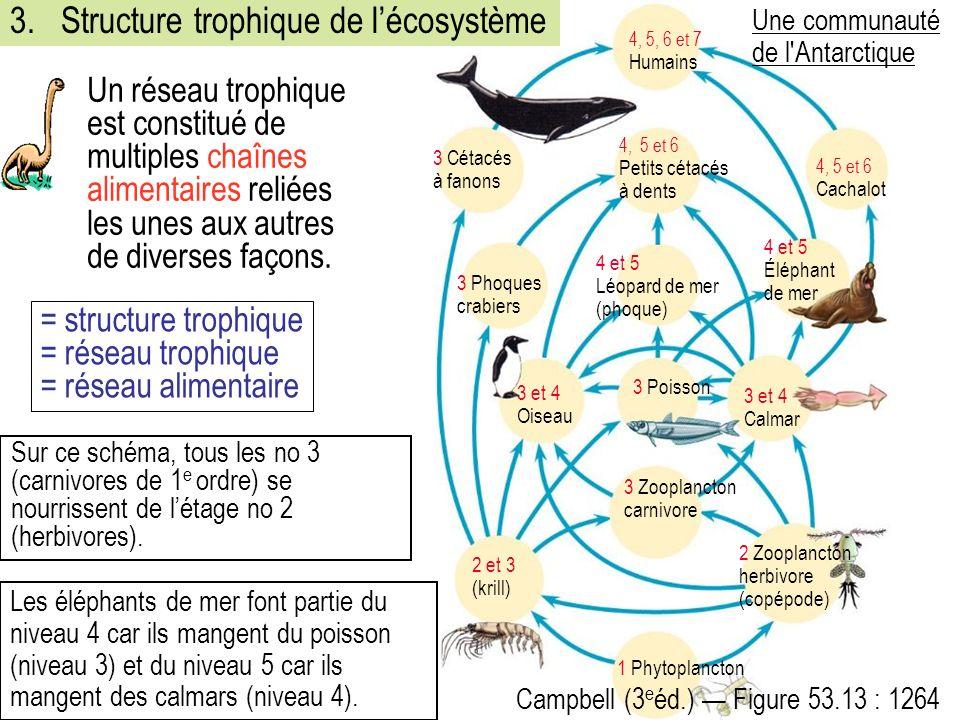 = structure trophique = réseau trophique = réseau alimentaire 3 et 4 Calmar 2 Zooplancton herbivore (copépode) 2 et 3 (krill) 3 Zooplancton carnivore 1 Phytoplancton 3 et 4 Oiseau 3 Poisson 4 et 5 Léopard de mer (phoque) 4, 5 et 6 Petits cétacés à dents 4, 5, 6 et 7 Humains 4, 5 et 6 Cachalot 3 Cétacés à fanons 3 Phoques crabiers 4 et 5 Éléphant de mer Campbell (3 e éd.) Figure 53.13 : 1264 Une communauté de l Antarctique 3.Structure trophique de lécosystème Un réseau trophique est constitué de multiples chaînes alimentaires reliées les unes aux autres de diverses façons.