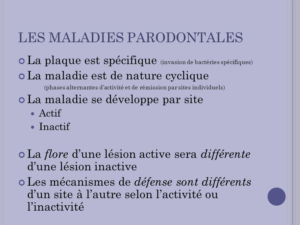 LES MALADIES PARODONTALES La plaque est spécifique (invasion de bactéries spécifiques) La maladie est de nature cyclique (phases alternantes dactivité