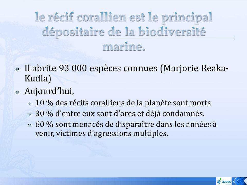 Il abrite 93 000 espèces connues (Marjorie Reaka- Kudla) Aujourdhui, 10 % des récifs coralliens de la planète sont morts 30 % dentre eux sont dores et
