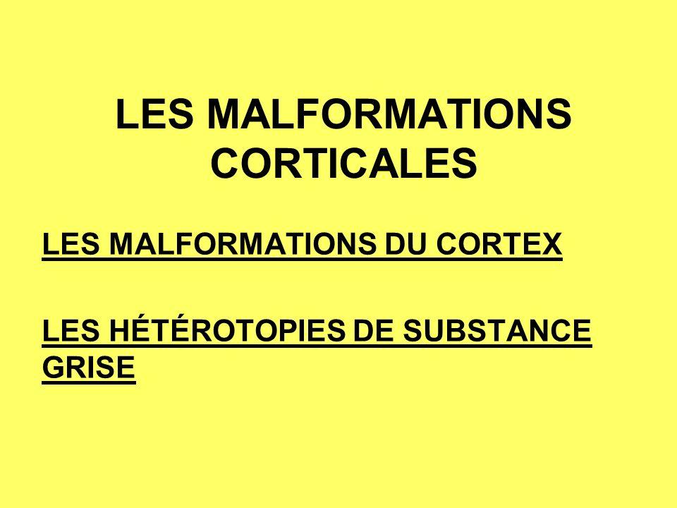 LES MALFORMATIONS CORTICALES LES MALFORMATIONS DU CORTEX LES HÉTÉROTOPIES DE SUBSTANCE GRISE