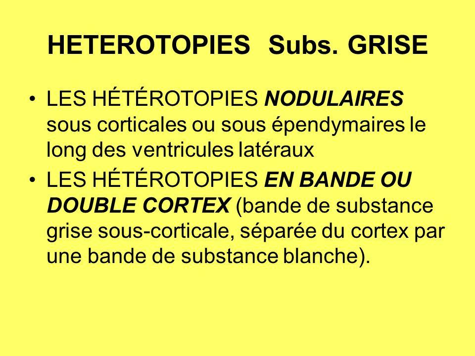 HETEROTOPIES Subs.