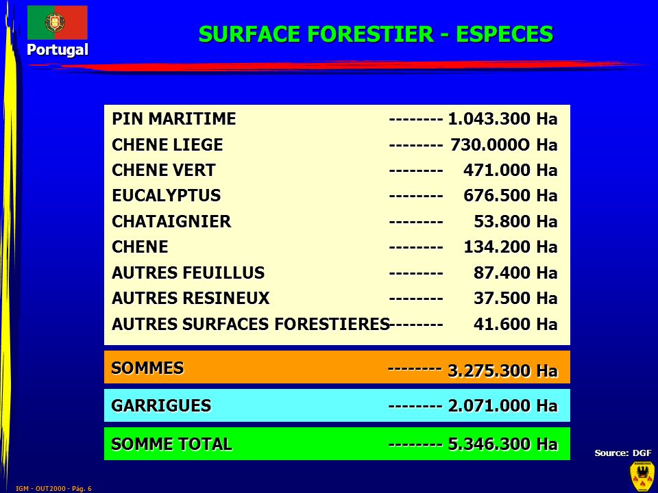 IGM - OUT2000 - Pág. 6 Portugal SURFACE FORESTIER - ESPECES Source: DGF PIN MARITIME CHENE LIEGE CHENE VERT EUCALYPTUSCHATAIGNIERCHENE AUTRES FEUILLUS