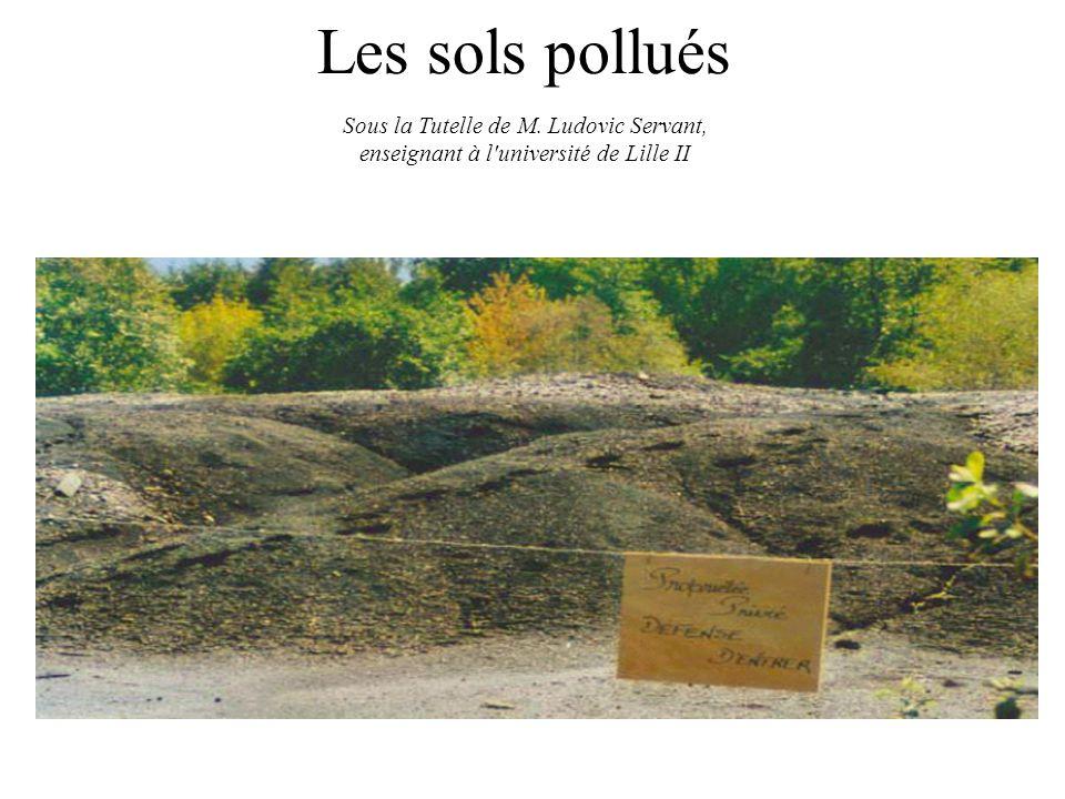 Les sols pollués Sous la Tutelle de M. Ludovic Servant, enseignant à l'université de Lille II