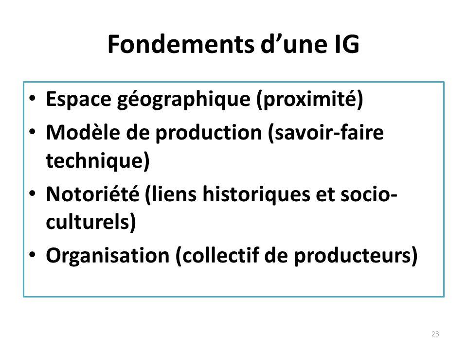 Fondements dune IG Espace géographique (proximité) Modèle de production (savoir-faire technique) Notoriété (liens historiques et socio- culturels) Org