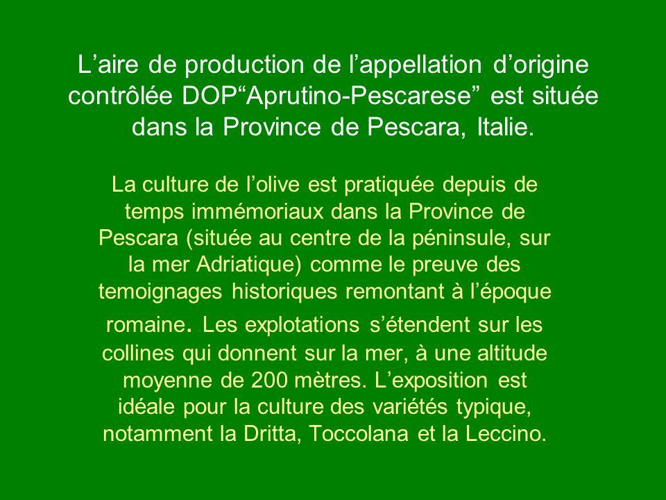 Laire de production de lappellation dorigine contrôlée DOPAprutino-Pescarese est située dans la Province de Pescara, Italie. La culture de lolive est