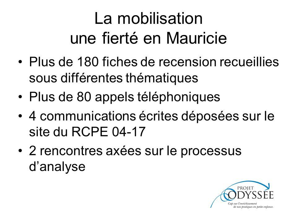 La mobilisation une fierté en Mauricie Plus de 180 fiches de recension recueillies sous différentes thématiques Plus de 80 appels téléphoniques 4 communications écrites déposées sur le site du RCPE 04-17 2 rencontres axées sur le processus danalyse